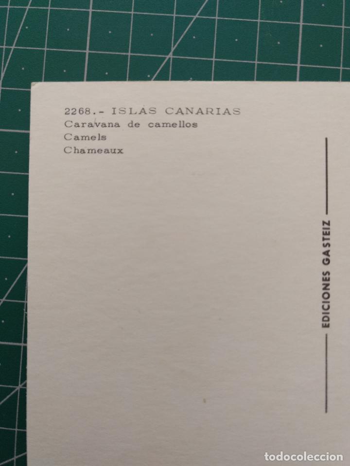 Postales: Postal 2268 Caravana de camellos. Islas Canarias. PEDIDO MÍNIMO 5€ - Foto 2 - 235571495