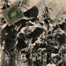 Postales: CANARIAS LAS PALMAS BANANAS POSTAL ANTIGUA AÑO 1902. Lote 239353500