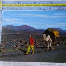 Postales: POSTAL DE LANZAROTE. AÑO 1972. LA ISLA DE LOS VOLCANESTIPISMO CANARIO, CAMELLO. 2572 AFORTUNAD. 3370. Lote 243682200