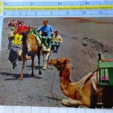 Postales: POSTAL DE LANZAROTE. AÑO 1972. CARAVANA DE CAMELLOS CON TURISTAS 5129 GASTEIZ. 3382. Lote 243683255