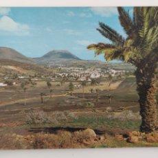 Postales: POSTAL LANZAROTE HARIA. VALLE DE LAS PALMERAS.. Lote 244818800