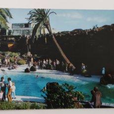 Postales: POSTAL LANZAROTE PISCINA DE LOS JAMEOS DEL AGUA. Lote 245024810