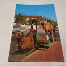 Postales: TENERIFE - POSTAL PUERTO DE LA CRUZ - CAMELLOS Y CAMELLERO. Lote 245262960