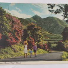 Postales: POSTAL HOMEWARD BOUND CANARY ISLANDS. Lote 246281165