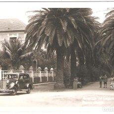 Postales: LA LAGUNA (TENERIFE) PASEO LARGO.. Lote 246789060