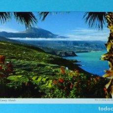 Postales: TENERIFE. ISLAS CANARIAS. Lote 256081785