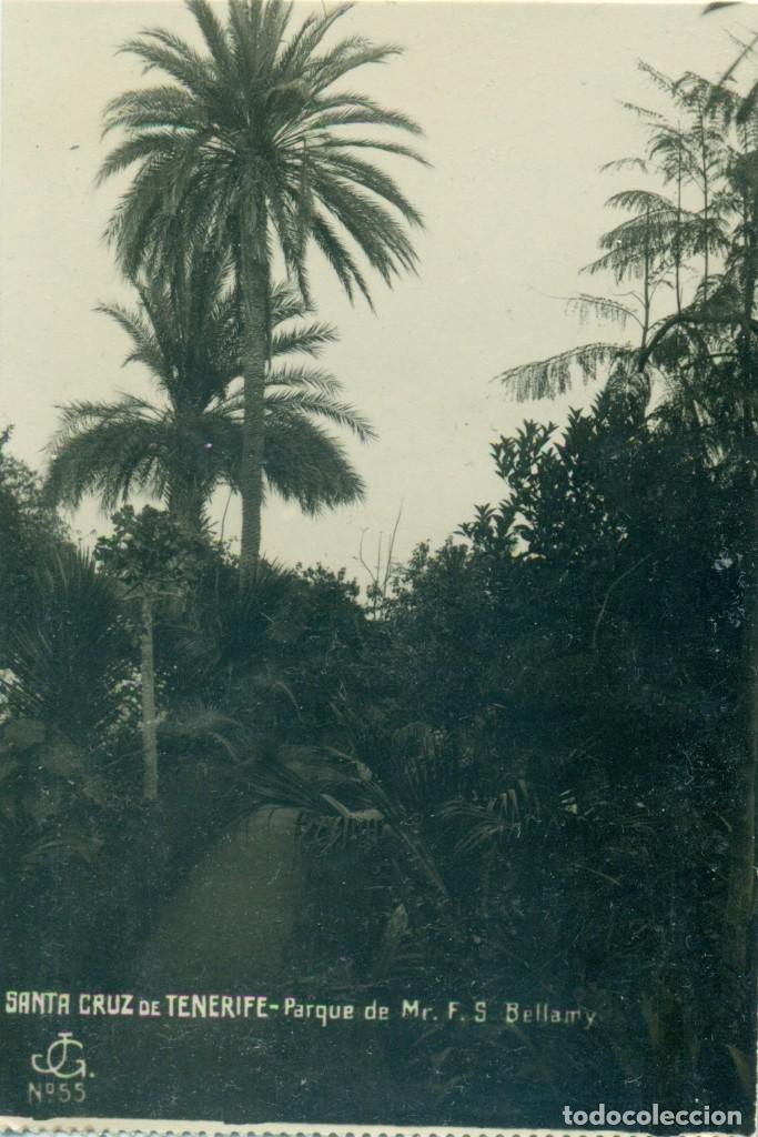 SANTA CRUZ DE TENERIFE. PARQUE DE MISTER BELLAMY. HACIA 1920. JG Nº 55. MUY RARA. (Postales - España - Canarias Antigua (hasta 1939))