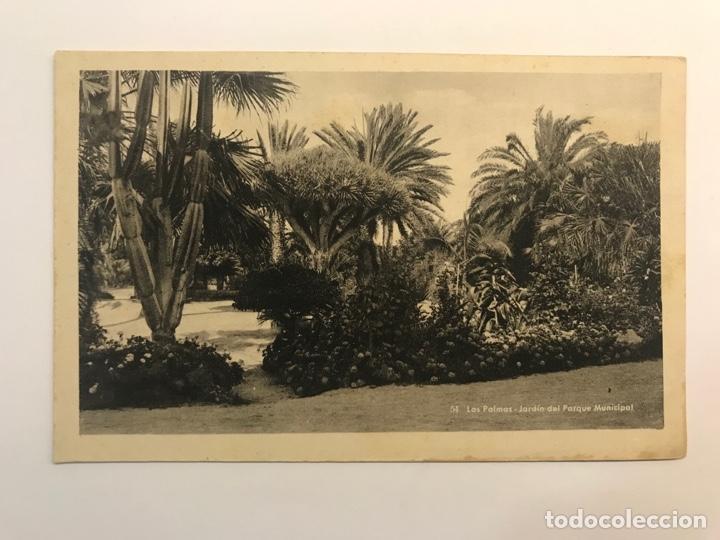 LAS PALMAS, POSTAL NO.54, JARDÍN DEL PARQUE MUNICIPAL. EDIC., BAZAR ALEMÁN (H.1940?) S/C (Postales - España - Canarias Moderna (desde 1940))