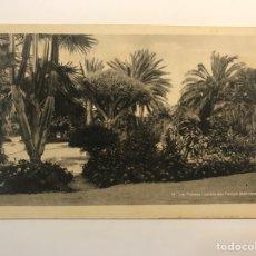 Postales: LAS PALMAS, POSTAL NO.54, JARDÍN DEL PARQUE MUNICIPAL. EDIC., BAZAR ALEMÁN (H.1940?) S/C. Lote 262134590