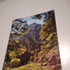 Postales: CALDERA DE TABURIENTE, CANARIAS. Lote 262802415