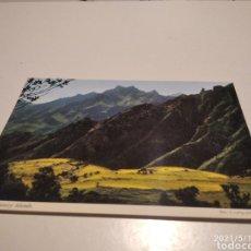 Postales: TENERIFE. Lote 262803205