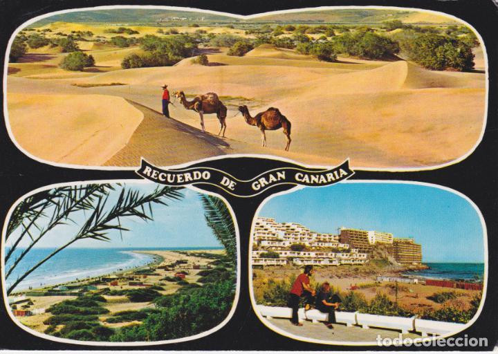 GRAN CANARIA, VISTAS DEL SUR DE LA ISLA - GLOBAL TRADERS 1166 - CIRCULADA (Postales - España - Canarias Moderna (desde 1940))
