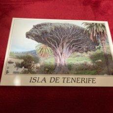 Postales: POSTAL ICOD DE LOS VINOS TENERIFE. Lote 268982494