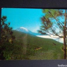 Postales: POSTAL DE TENERIFE. CANARIAS.. Lote 270103453