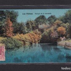 Postales: POSTAL DE ESPAÑA - LAS PALMAS. PAISAJE DE LA MONTAÑA, 1919 - ISLAS CANARIAS. Lote 270142183
