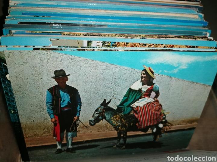 Postales: Gran lote de postales de CANARIAS. Años 60 y 70 - Foto 49 - 270157398