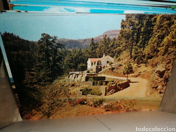 Postales: Gran lote de postales de CANARIAS. Años 60 y 70 - Foto 61 - 270157398