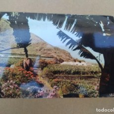 Postales: POSTAL ISLAS CANARIAS, EN LAS CARRETERAS DE LA COSTA NORTE. Lote 271570868