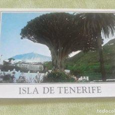 Postales: ICOD - TENERIFE - DRAGO MILENARIO, AL FONDE TEIDE. Lote 274310453
