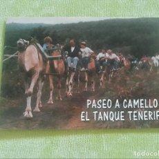 Postales: PASEO A CAMELLO EL TANQUE - TENERIFE. Lote 274311588