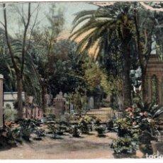 Cartoline: PRECIOSA POSTAL - LAS PALMAS - (CANARIA) - ALAMEDA. Lote 276414938
