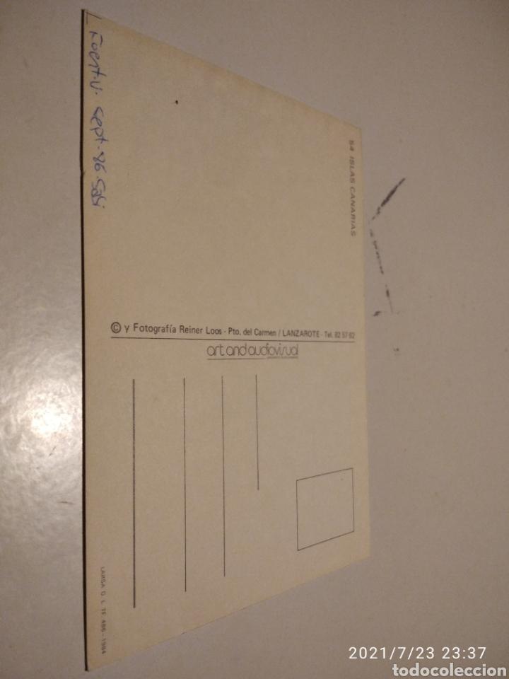 Postales: Postal Islas Canarias Labradores mulas - Foto 2 - 277095738