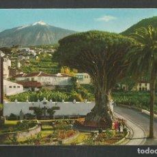 Postales: POSTAL SIN CIRCULAR ICOD DE LOS VINOS 23 TENERIFE EDITA PADANE PEREZ ZAMORA. Lote 277560878