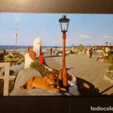 Postales: PUERTO DE LA CRUZ TENERIFE. Lote 277846818