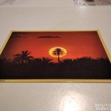 Postales: POSTAL ISLAS CANARIAS PUESTA DE SOL PALMERA. Lote 278294493