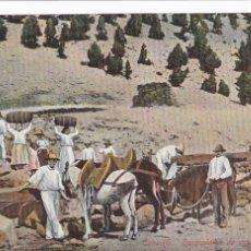Postales: TENERIFE, CARGACIONES DE AGUA. ED. NOBREGA'S ENGLISH BAZAR PVK Nº 9226. BYN COLOREADA. SIN CIRCULAR. Lote 278801658