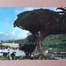 Postales: POSTAL 40 CAMACHO Y DUARTE. DRAGO DE ICOD. TENERIFE. 1963. CIRCULADA.. Lote 279593528