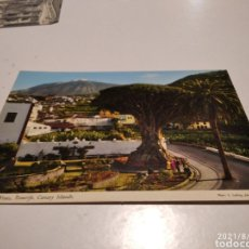 Postales: POSTAL TENERIFE TEIDE, DRAGO. Lote 280119783