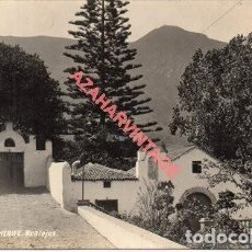 Cartoline: ANTIGUA POSTAL FOTOGRAFICA, TENERIFE, REALEJOS, FOT. A.BENITEZ. Lote 287236293