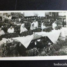 Postales: TENERIFE EMPAQUETADO DE PLATANOS. Lote 287368273