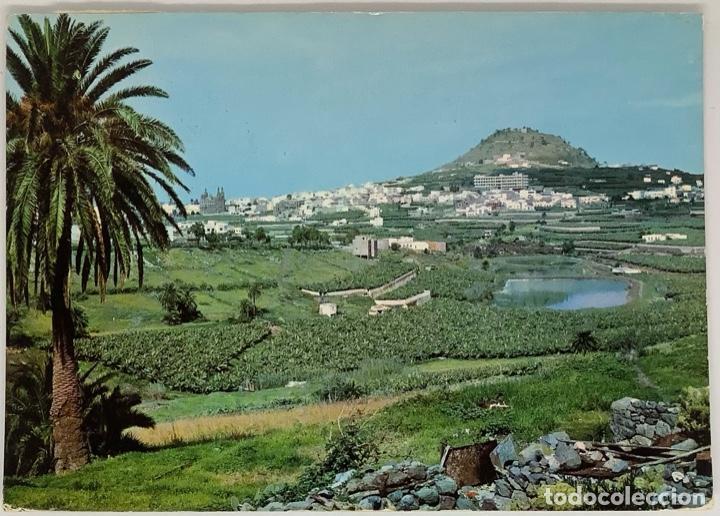 GRAN CANARIA, VISTA PARCIAL DE ARUCAS. RABADÁN CIRC (Postales - España - Canarias Moderna (desde 1940))
