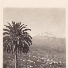 Postales: TENERIFE, VALLE DE LA OROTAVA. ED. FOTO BAENA. POSTAL FOTOGRAFICA SIN CIRCULAR. Lote 294479493