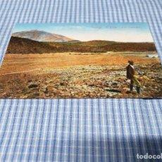 Postales: POSTAL ANTIGUA CANARIAS. SANTA CRUZ DE TENERIFE. EL TEIDE. LAS CAÑADAS. Lote 295345273