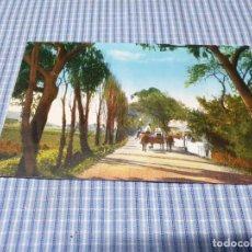 Postales: POSTAL ANTIGUA CANARIAS. SANTA CRUZ DE TENERIFE. LA LAGUNA. Lote 295345733