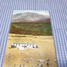 Postales: POSTAL ANTIGUA CANARIAS. SANTA CRUZ DE TENERIFE. TEIDE. LAS CAÑADAS. Lote 295520468