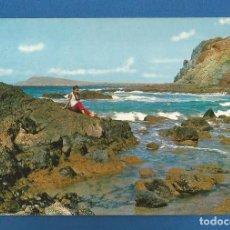 Cartoline: POSTAL SIN CIRCULAR LANZAROTE 2618 PUNTA DE PAPAGAYOS EDITA BEASCOA. Lote 295717263