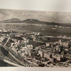 Postales: LAS PALMAS DE GRAN CANARIA-CIUDAD JARDÍN-Nº 229 ED. ARRIBAS. Lote 297042718