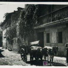Postales: TARJETA POSTAL DE SANTILLANA, CANTABRIA. CALLE DE LA CARRERA. Lote 9400213