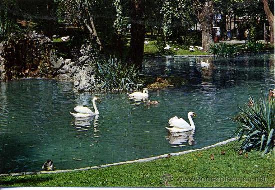 PARQUE DE SAN FRANCISCO( OVIEDO )+ POSTALES Y MUCHO + EN MI TIENDA (Postales - España - Cantabria Moderna (desde 1.940))