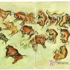 Postales: MAGNIFICA POSTAL - CUEVAS DE ALTAMIRA (SANTANDER) - CONJUNTO DE PINTURAS RUPESTRE. Lote 16411354