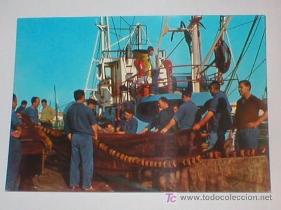 SANTANDER PREPARATIVOS PARA LA PESCA 1967 (Postales - España - Cantabria Moderna (desde 1.940))