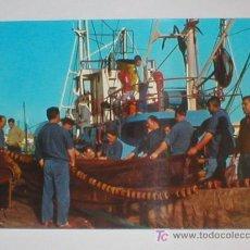 Postales: SANTANDER PREPARATIVOS PARA LA PESCA 1967. Lote 25680161