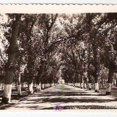 Postales: LAREDO-26 ENTRADA -EDICIONES ARRIBAS ZARAGOZA- SIN ESCRIBIR-- VELL I BELL. Lote 25053268