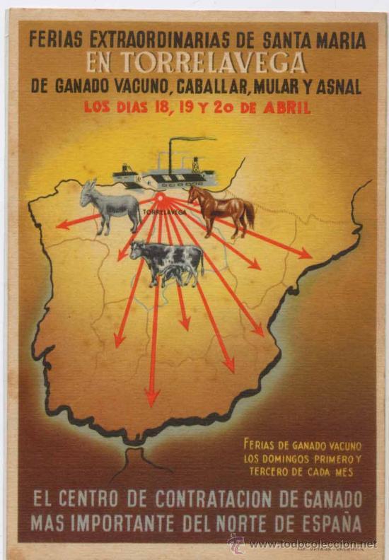 TORRELAVEGA(CANTABRIA).-FERIAS EXTRAORDINARIAS DE GANADO VACUNO,MULAR Y CABALLAR (Postales - España - Cantabria Moderna (desde 1.940))