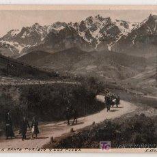 Postales: TARJETA POSTAL FOTOGRAFICA DE LA CARRETERA A SANTO TORIBIO Y LOS PICOS,SANTADER Nº 28. E. BUSTAMANTE. Lote 16933012