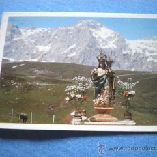 Postales: POSTAL PICOS EUROPA VIRGEN DE LA SALUD ALIVA NO CIRCULADA. Lote 17350954